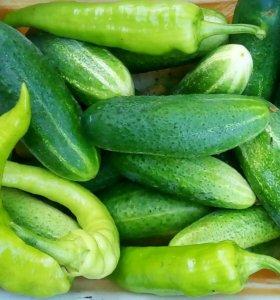 зелень, огурцы, помидоры