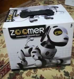 Zoomer робот-пёс - лучший подарок!
