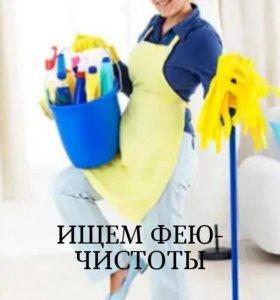 Фея чистоты