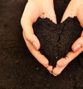 земля и глина