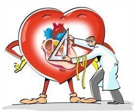 Консультативный приём кардиолога, ЭКГ