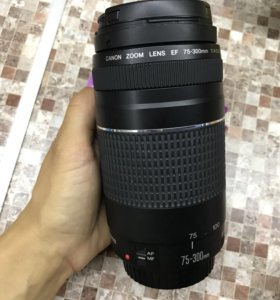 Canon EF 75-300 mm f 4-5.6