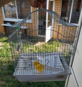 Клетка для папугаев