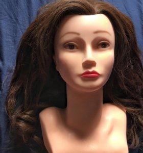 Голова тренировочная с натуральными волосами