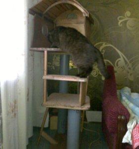 Мини-городок для котиков