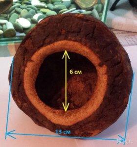 Миска поилка купалка из тропического ореха новая