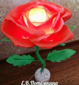 Светильники розы. Ростовая роза