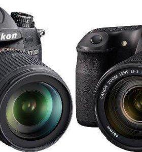 Аренда объективов Canon, Nikon, Sigma