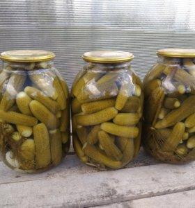 Огурцы маринованные 3 литра