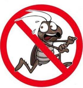 Уничтожение тараканов,клопов и т д.