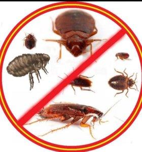 Уничтожение любых насекомых