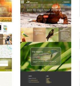 Создание ярких стильных профессиональных сайтов