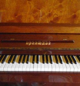 фортепиано прелюдия