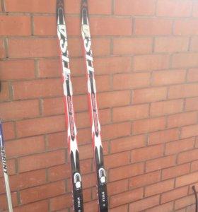 Лыжи беговые Tisa