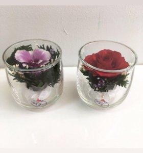 Живые цветы в вакууме(стекле)