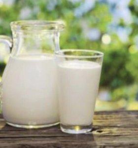 Молоко коровье с доставкой