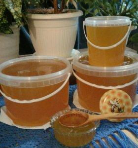 Мёд из Тамбовской области