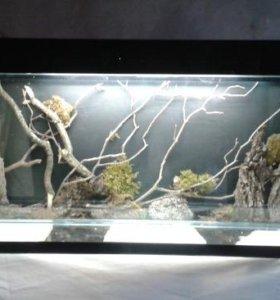 Продам аквариум с панорамным дизайном