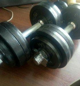 Гантели Torneo 13 кг