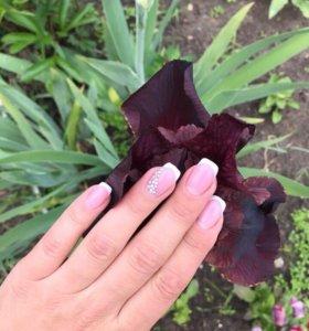 Наращивание ногтей (акция )