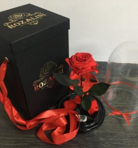 Оригинальная роза в колбе Rozalini