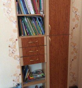 Шкаф стеллаж для книг и одежды