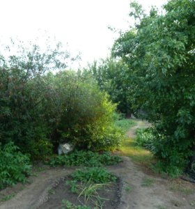 Участок, 9 сот., сельхоз (снт или днп)