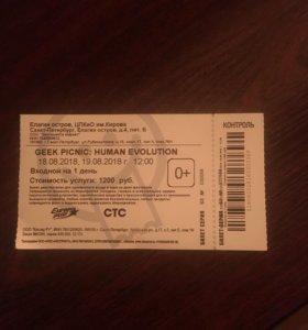 Билет на GEEK PICNIC