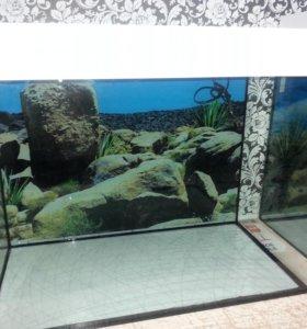 Черепашники и аквариумы