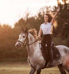 Конные прогулки, обучение верховой езде