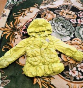 Куртки и жилет