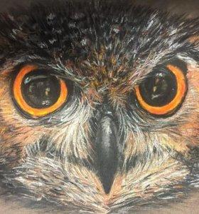 """картина """"Мудрая сова"""" выполнена сухой пастелью"""