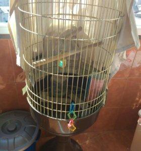 Клетка на подставке для больших птиц