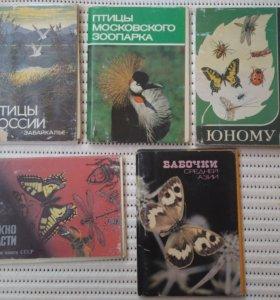 бабочки азии птицы зоопарка забайкалья открытки