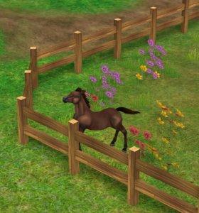 Лошадь Моргана