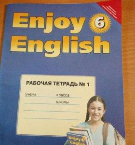 Рабочая тетрадь по англ языку 6 класс Биболетова