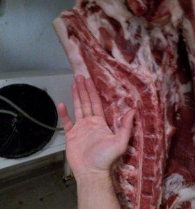 Мясо. Свинина.