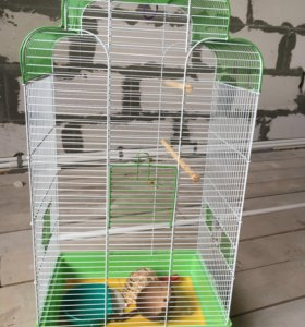 Клетка + подарок для волнистых попугаев