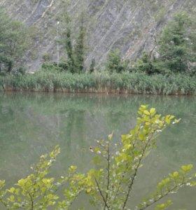 Рыболовная консультация