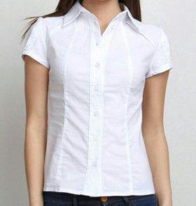 Рубашка белая 46-48