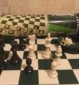 Шахматы в тубусе