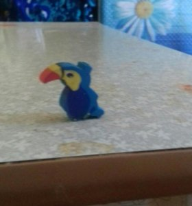 Милый ластик попугая