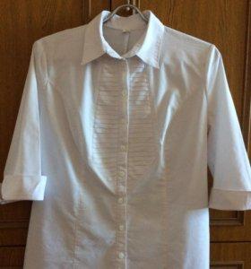 Блуза стрейч