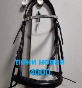 уздечки для лошади