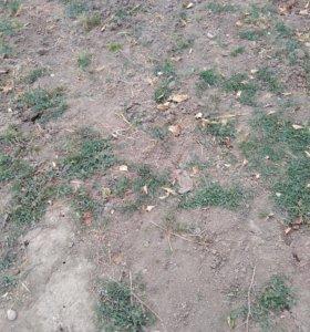 Участок, 2800 сот., сельхоз (снт или днп)