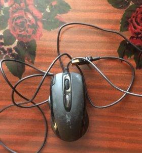 мышка х7