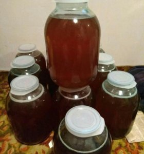 Мёд 2018🐝🐝🐝🌷🌷🌷