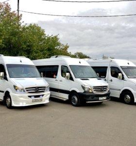Заказ автобуса свадьба пассажирские перевозки
