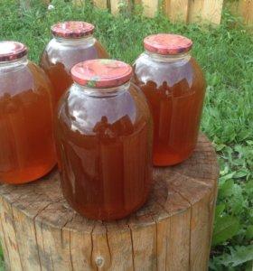 Мед из своей пасеки