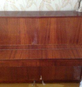 Пианино 🎹🎼